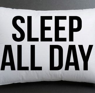 sleep all day pillow